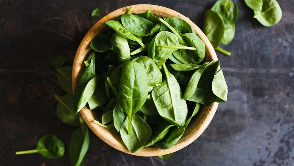 Basil for Hives