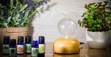 Reasons You Should Buy Nebulizing Essential Oil Diffuser