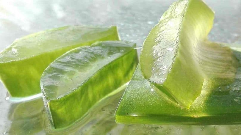 Is Pure Aloe Vera Really Good for Psoriasis