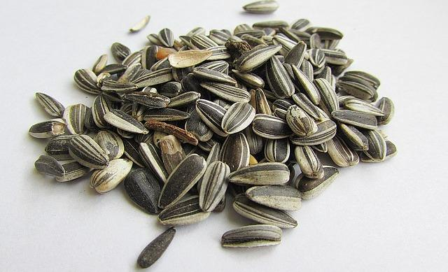 home remedies to grow nails with Sunflower seeds
